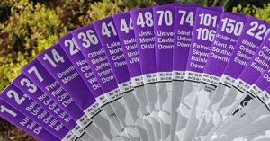 purple_timetables3_cropped